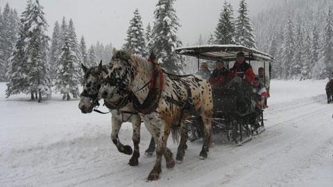 Foto 3 – Der Verkehrsverein im winterlichen Tannheimer Tal