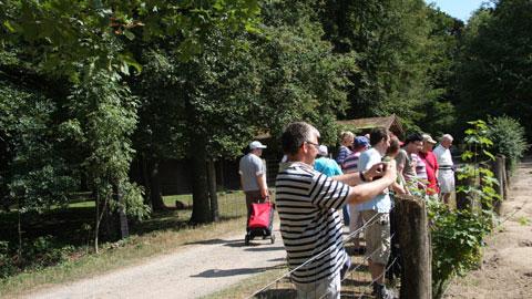 Foto 1 – Zum Biotopwildpark Anholter Schweiz