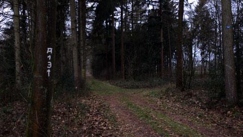 """Foto 4 – Winterspaziergang """"rund um Schloss Lembeck"""""""