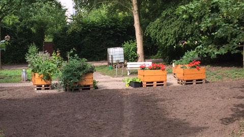 """Foto 5 – Radtour zum Thema """"Biologische Vielfalt (Biodiversität) in Dorsten"""""""