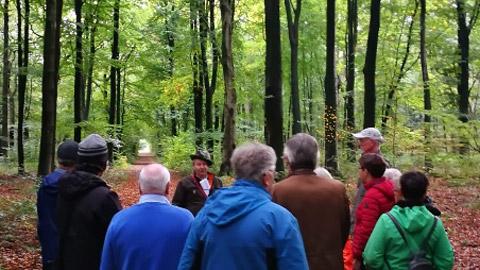 Foto 3 – Kombinierte Rad- und Fußwanderung durch den Barloer Busch (Stadtswald)