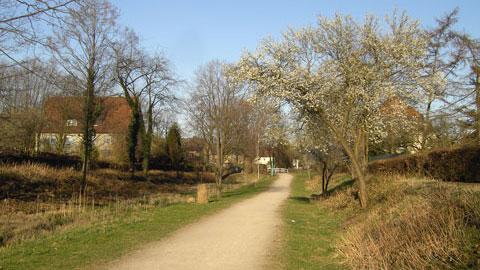 Radweg am Hammbach-Rücklauf