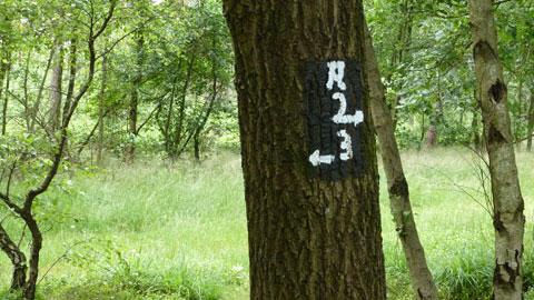 Kennzeichnung des Wegenetzes